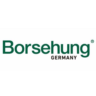 BORSEHUNG